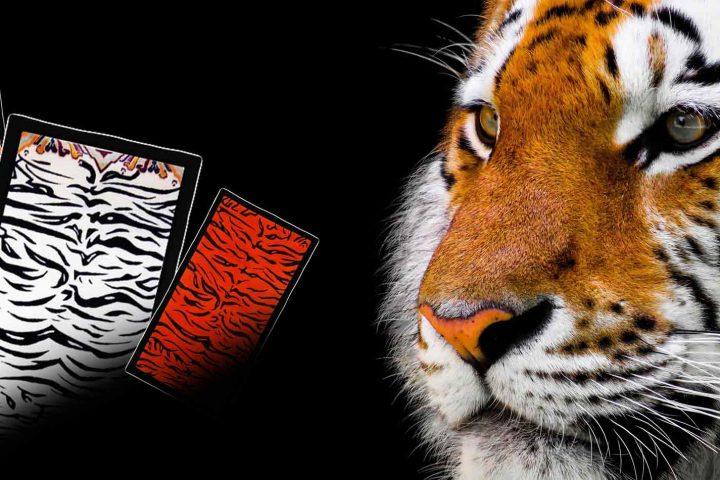 Mayer-teppiche-tibet-handgeknüpft-tiger